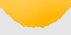 Straylight Logo
